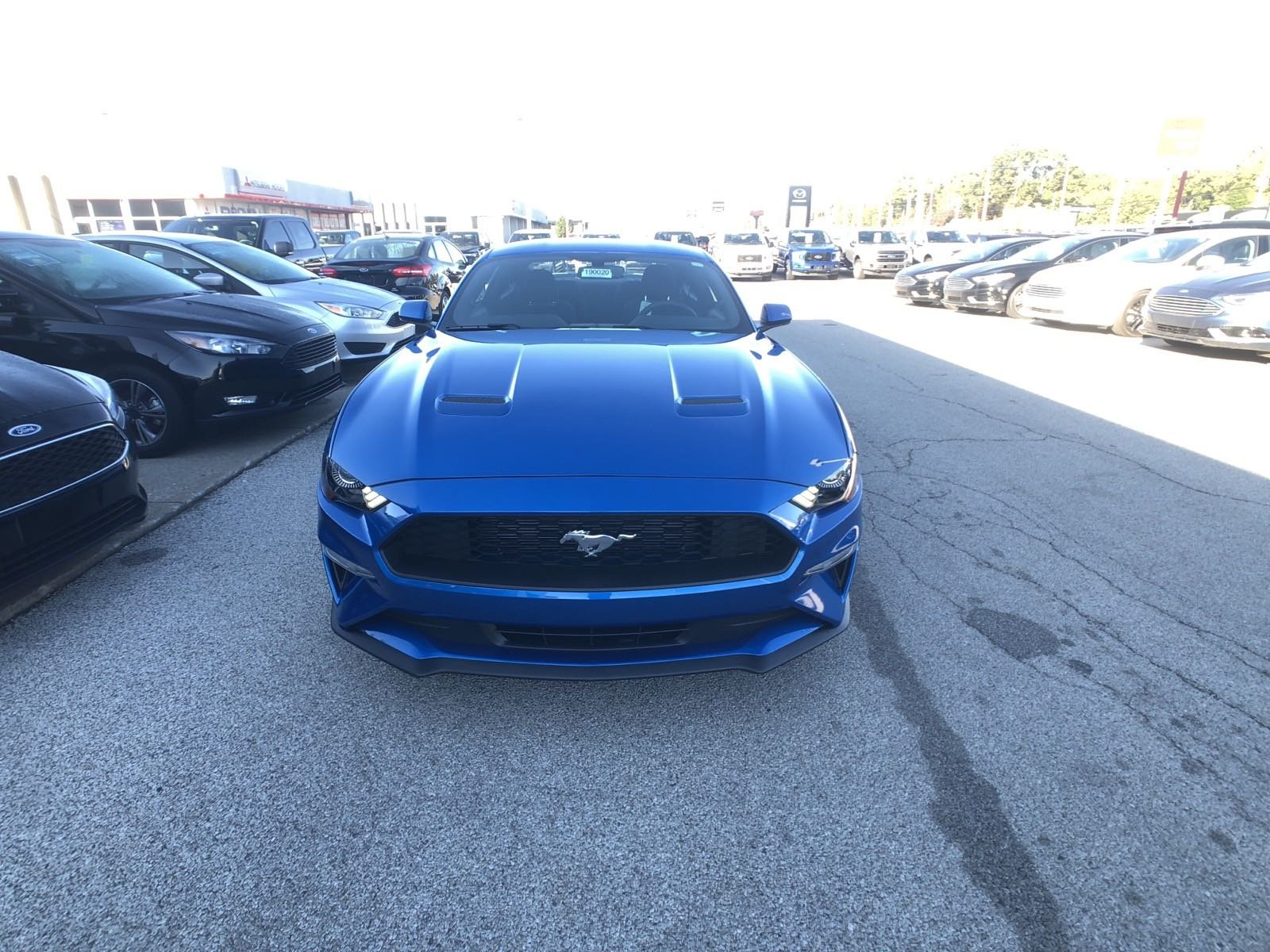 New 2019 Ford Mustang EcoBoost 2dr Car in Toledo